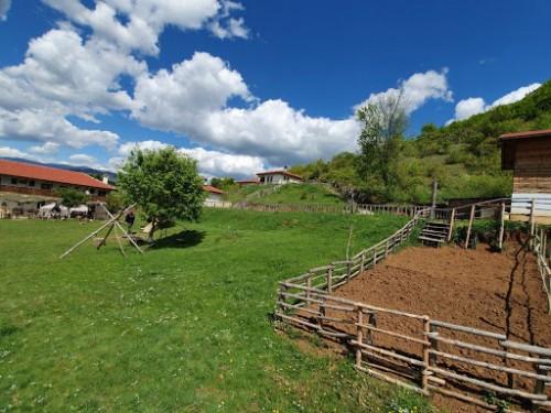 Селско краве сирене от ферма Егрек, ~550гр. 3
