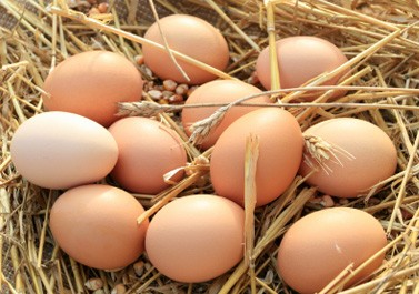 Фермерски кокоши яйца 6 бр. 1