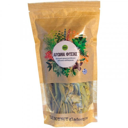 Sideritis glandestina Гръцки планински чай 1
